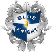 Blue Knight Software Solutions- Quality & affordable website designers