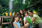 Jurong Bird Park  by Dpauls - Unforgettable experience