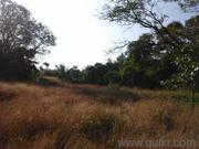 Settlement zone plot for sale at guirdolim chandor south goa with a be