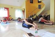 Join 200 Hours Hatha Yoga Teacher Training Course in Goa India