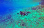best scuba diving in goa