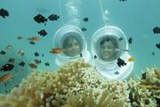 Explore Underwater Magic By Experiencing Sea Walk In Andaman