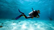 Best Scuba diving services in Goa